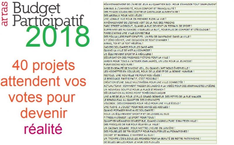 Du 17/05 au 17/06 votez au Budget Participatif arrageois !